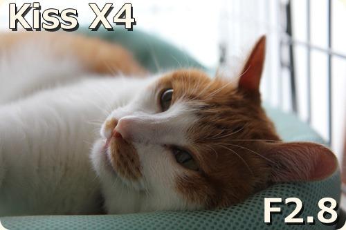 F2.8 X4で撮影